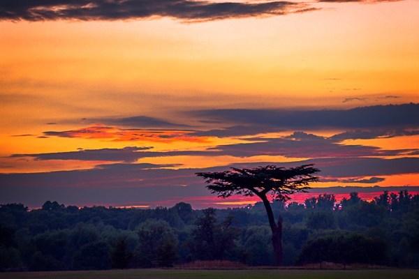 Watford Cassiobury Park Sunset